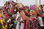 A man decorating his camel during the inauguration programme of Pushkar Camel fair.