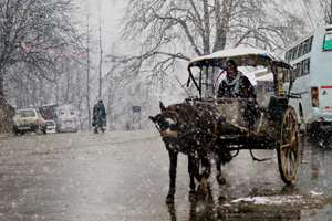 A horse cart driver drives his cart on a snow-covered road closed due to heavy snowfall at Qazigund in Anantnag district.
