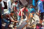 Rescue works underway in a building which collapsed after a bomb blast at Naini area, in Allahabad.