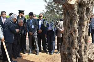 President, Pranab Mukherjee during planting of an Olive Tree, at Al Hussein Peace Park, in Amman Jordan.