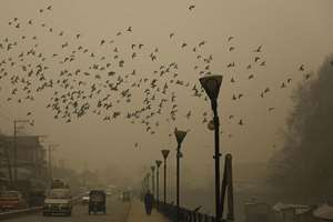 A Kashmiri man walks during a foggy morning in Srinagar, J&K. Foggy weather in Kashmir valley affected surface and air traffic causing flight cancellations to and from Srinagar International Airport, stranding hundreds of passengers.
