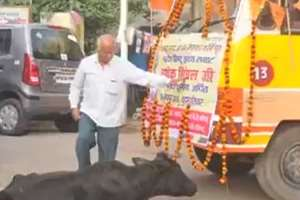 A VHP worker kicks a cow while going for immersion of ashes of Ashok Singhal in Lucknow.