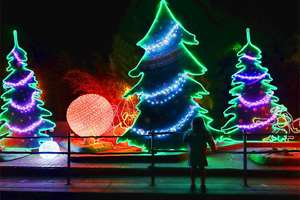 A visitor to the L.A. Zoo looks at a light display for the L.A. Zoo Lights event in Los Angeles. The second annual light show at the zoo opened and continues through Jan. 3, 2016.